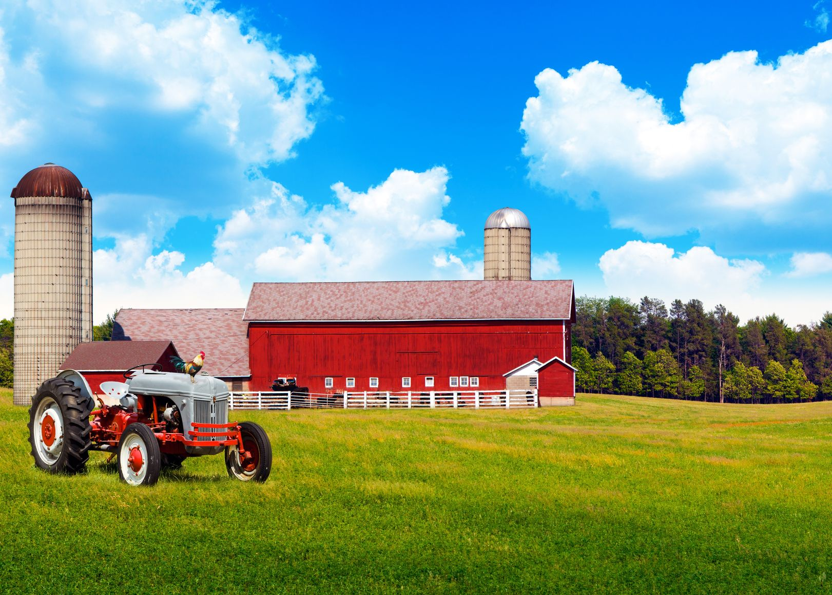 Castle Rock, CO. Farm & Ranch Insurance